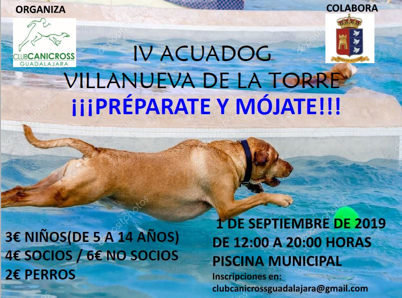 Aquadog Villanueva